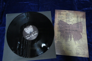 When Bitter Spring Sleeps - Coven of the Wolves Vinyl 12 in Vinyl LP - Click Image to Close
